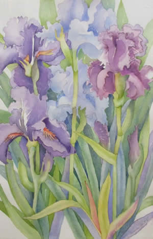Frances Hart watercolors at Station Gallery